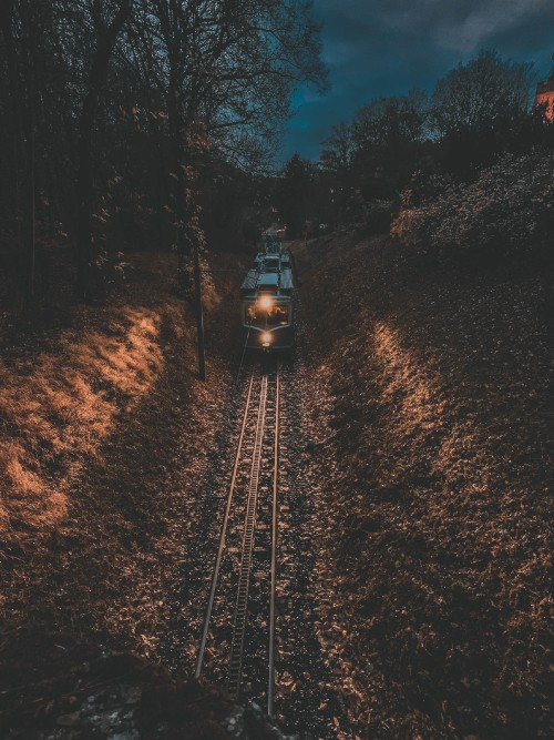 train_with_lights_on_traveling_down_a_set_of_tracks_at_night-scopio-347264ce-257f-4209-b4a4-49e5ca2e8f0fd06408bd4729f03b.jpg